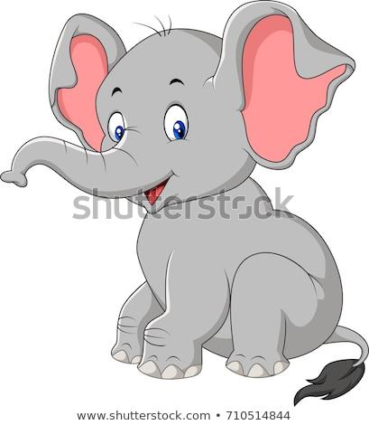 Cartoon слон иллюстрация серый улыбаясь изолированный Сток-фото © liliwhite
