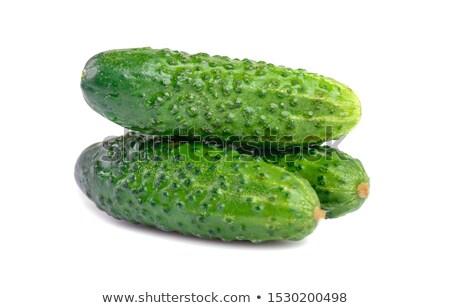pequeno · pepino · planta · vegetal · fresco - foto stock © sundaemorning
