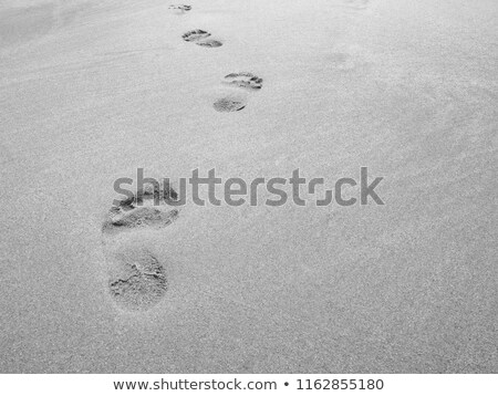 footsteps in the fine sand of the beach stock photo © meinzahn