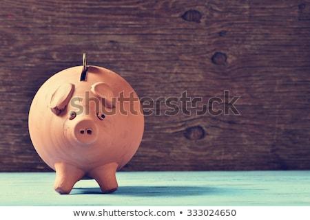 money saver stock photo © phakimata