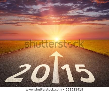 2015 年 単語 レンダリング 3dテキスト ストックフォト © ottawaweb