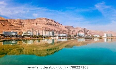 Stock foto: Coastline And Hotels At The Dead Sea