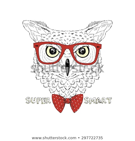 drawn owl portrait stock photo © kirill_m