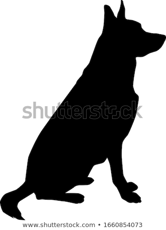 dog silhouette in beg pose Stock photo © Istanbul2009