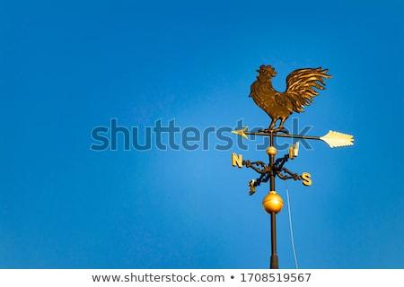 флюгер Blue Sky зеленый синий объект погода Сток-фото © latent