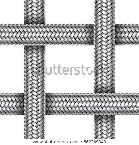 Braid metal illustration. Stock photo © ExpressVectors