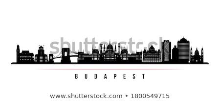 skyline · Boedapest · avond · heuvel · zuiden · plaag - stockfoto © szabiphotography