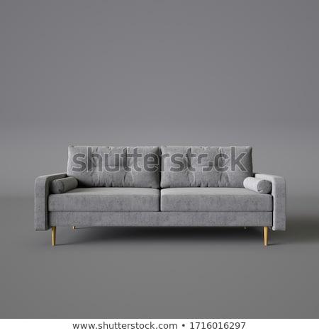odizolowany · skóry · sofa · wnętrza · 3D · obraz - zdjęcia stock © ISerg