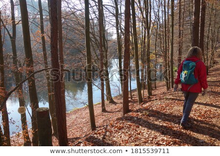 Woman with red jacket is happy to be in the mountains stock photo © kb-photodesign