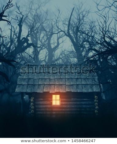 Scary nacht hut verschrikkelijk heks houten Stockfoto © tatiana3337