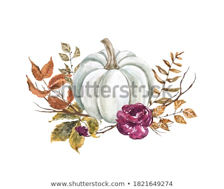 Dry leaf on the branch, fall season Stock photo © stevanovicigor
