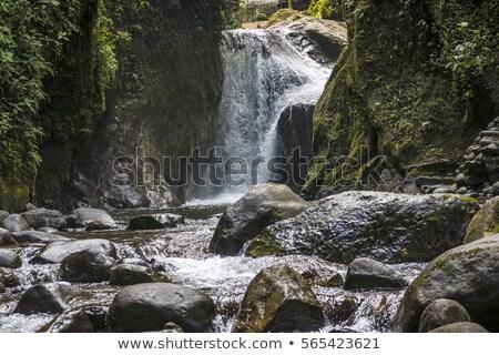 çağlayan rainforest Ekvador manzaralı manzara güzellik Stok fotoğraf © meinzahn