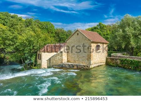 pormenor · pequeno · cachoeira · paisagem · beleza · verde - foto stock © suljo