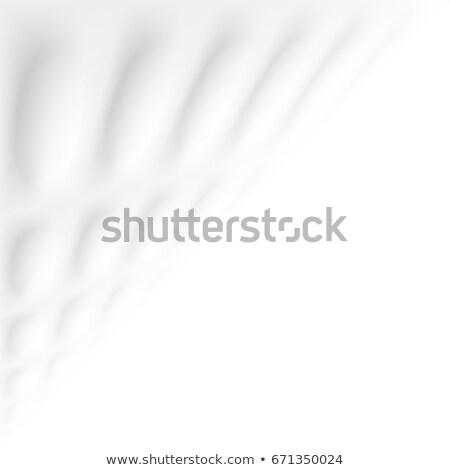 Streszczenie Płytka geometryczny tekstury biały czyste Zdjęcia stock © ExpressVectors