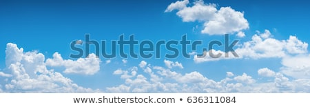 Blue summer sky white cumulus clouds Stock photo © lunamarina