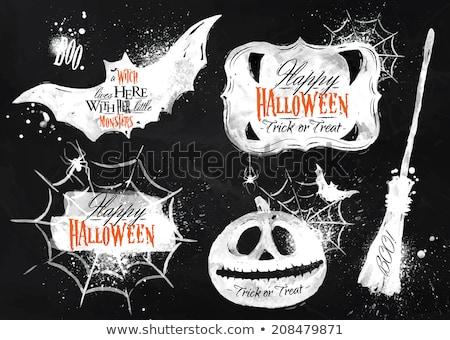 Tahta halloween örümcek kabak okul çizim Stok fotoğraf © romvo