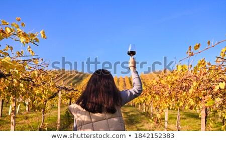 Avrupa kadın şarap bakıyor Toskana vadi Stok fotoğraf © saje
