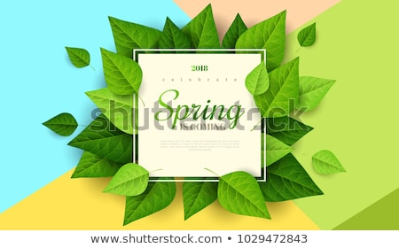 Sale Poster With Leaves And Nature Background Stock photo © barbaliss