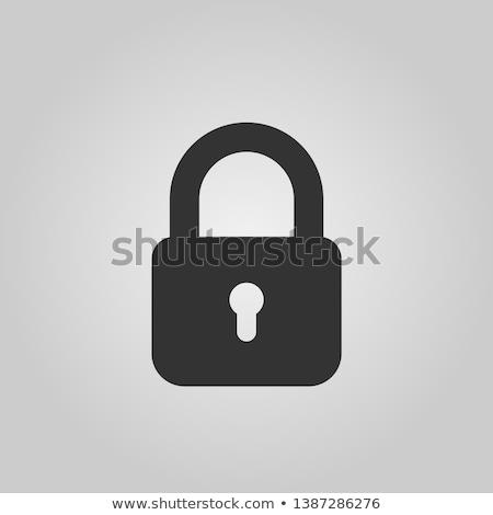 vector · combinatie · hangslot · icon · chroom · Blauw - stockfoto © smoki