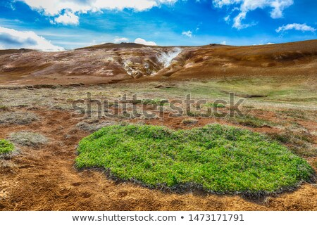 Evaporation in the geothermal valley, Leirhnjukur, Iceland Stock photo © Kotenko