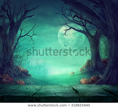 halloween with pumpkin and dark forest scary halloween design stock photo © mythja