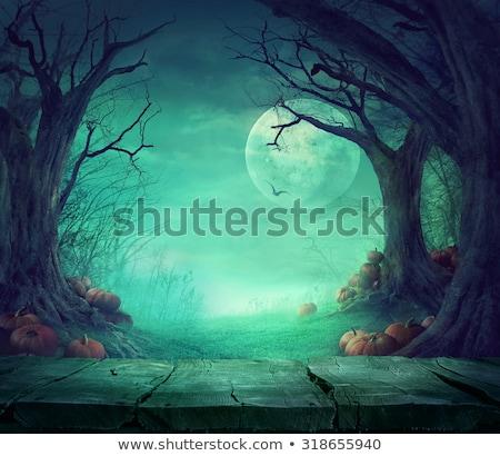 halloween · terv · erdő · tökök · horror · ősz - stock fotó © mythja