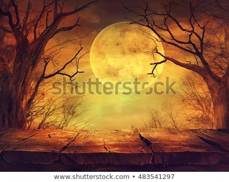 Halloween nacht pompoenen volle maan gezicht maan Stockfoto © lemony