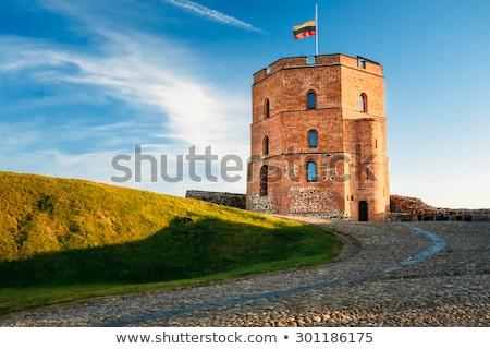 torony · Vilnius · Litvánia · égbolt · város · fal - stock fotó © vapi