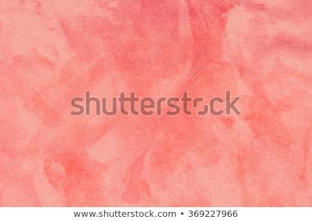 Koraal abstract kleur live grijs sterren Stockfoto © blackmoon979