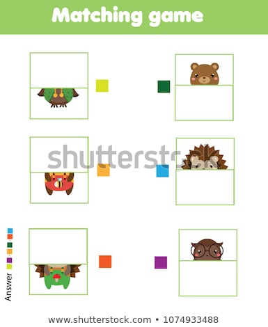 match halves of bears educational game stock photo © izakowski