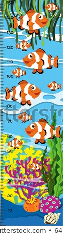 Measuring height scales on paper with clownfish in the sea Stock photo © colematt