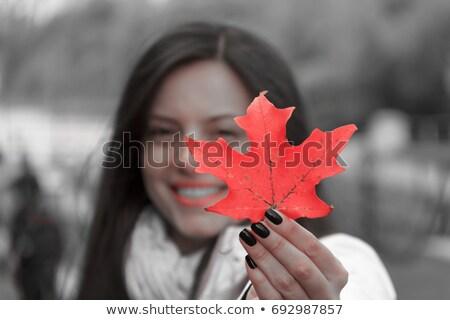 Ragazza foglia d'acero autunno infanzia stagione Foto d'archivio © dolgachov