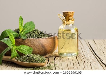mint · olie · blad · glas · achtergrond · fles - stockfoto © tycoon