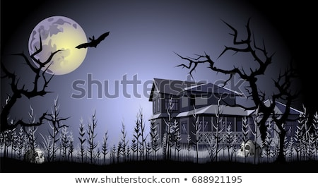 haunted house on fullmoon night stock photo © colematt