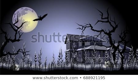 Kisértetjárta ház éjszaka illusztráció tájkép otthon Stock fotó © colematt