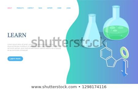 Lernen Seite Wissenschaft Kolben Glühbirne Vektor Stock foto © robuart