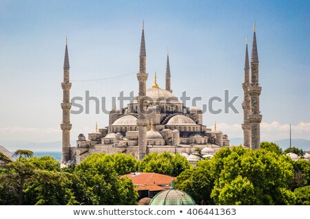 view of sultan ahmet mosque and domes stock photo © grafvision