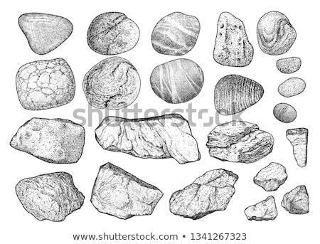Pedra rocha decorativo elemento monocromático vetor Foto stock © pikepicture