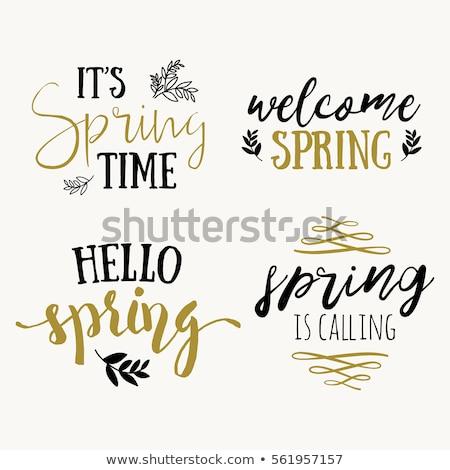 Hallo Frühling Design zitieren Grußkarte Plakat Stock foto © barsrsind