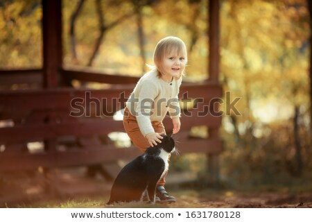 A girl with a domestic cat walking in the autumn public Park with yellow leaves Stock photo © ElenaBatkova