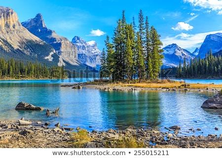 Rocky Mountains in Jasper National Park Stock photo © photoblueice