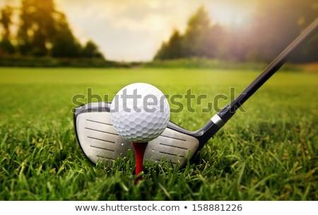 golflabda · naplemente · zöld · fű · égbolt · sport · tájkép - stock fotó © photocreo
