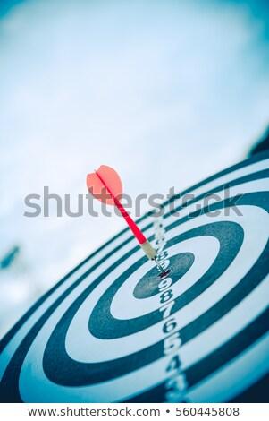 dart · target · icon · oog · succes · prestatie - stockfoto © vichie81