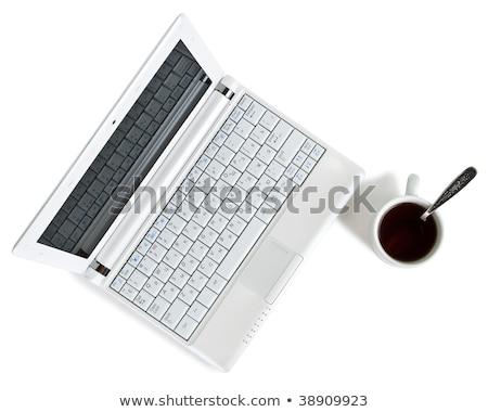 Siyah netbook'lar yalıtılmış beyaz bilgisayar dizüstü bilgisayar Stok fotoğraf © ozaiachin
