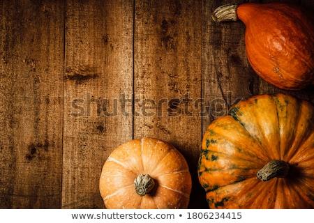 still life of pumpkins Stock photo © phbcz