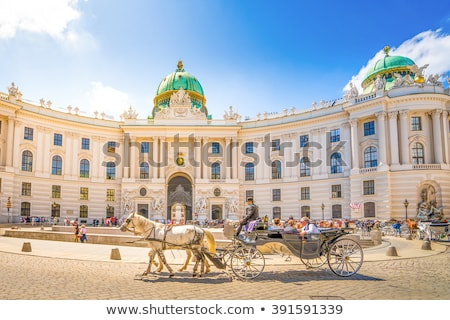 panorama of hofburg vienna austria stock photo © meinzahn