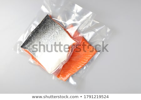 Seal and Fish Stock photo © cteconsulting