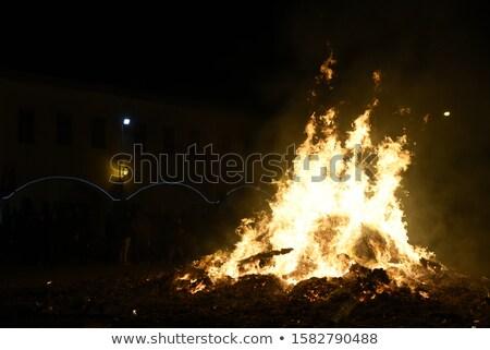 grande · fogueira · ardente · madeira · natureza · laranja - foto stock © dinozzaver