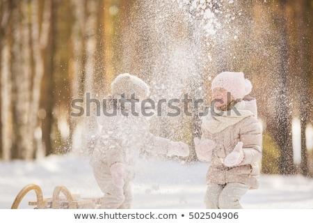 Gyerekek hógolyó verekedés gyerekek jókedv tinédzser Stock fotó © meinzahn