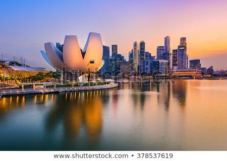 Cingapura metrópole parque centro da cidade luz do sol manhã Foto stock © joyr